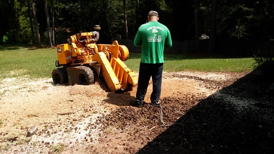 stump grinding powder springs